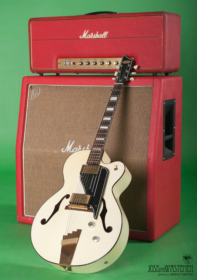 guitar supro sierra breysse